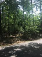 Lots 50 and 51 Chinquapin Pass, Dadeville, AL 36853