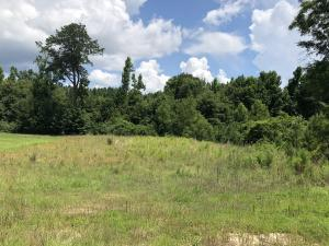 Lot 4 Magnolia Estates, Alexander City, AL 35010