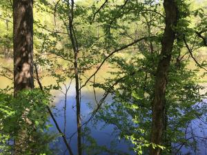 Lot 8 Waverly Lane, Jacksons Gap, AL 36861