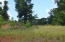 Overlook Drive, Dadeville, AL 36853