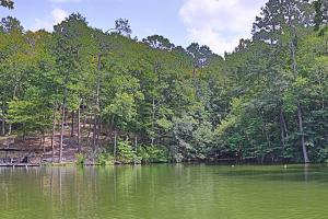 Lot 2 Columbine, Jacksons Gap, AL 36861