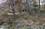 15-A Columbine Dr, Jacksons Gap, AL 36861