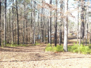 Lot 7 Manoy Cove Drive, Jacksons Gap, AL 36861