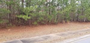 Lot 35 Water Oak Run, Jacksons Gap, AL 36861