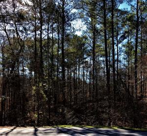 Creek Landing, Alexander City, AL 35010