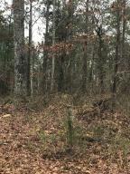 80 Acres North of Daviston, Daviston, AL 36256