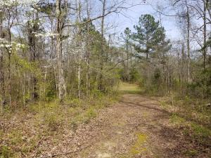Ball Field Rd, Goodwater, AL 35072