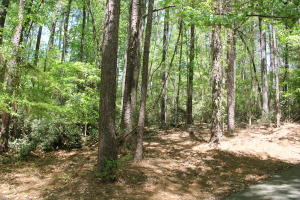 Lot 109 Hickory Way, Dadeville, AL 36853