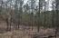 Lot 38 Fern Ridge Ct, Dadeville, AL 36853