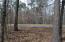 Lot 37 Fern Ridge Ct, Dadeville, AL 36853