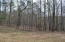Lot 40 Fern Ridge Ct, Dadeville, AL 36853