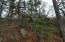 Riverknolle Rd, Tallassee, AL 36078