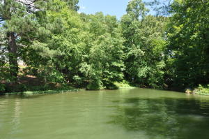 Timber Cove, Jacksons Gap, AL 36861