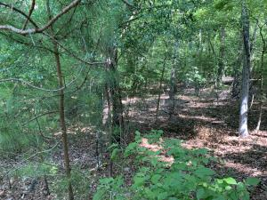 Lot 32 Lakeview Ridge, Dadeville, AL 36853