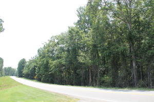 13+/- acres Hwy 49 South, Dadeville, AL 36853