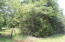 13+/- acres Hwy 49 South, Dadeville, AL 36853