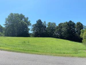 Lot #11 Winding Creek Road, Alexander City, AL 35010