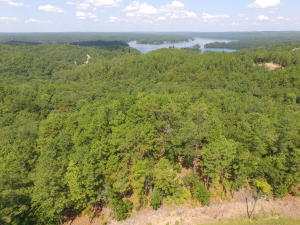 40 +/- Acres Eagle Mountain Drive, Rockford, AL 35136