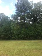 Lot 41 Columbine, Jacksons Gap, AL 36861