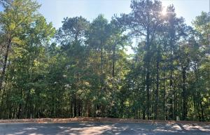 Lot 35 Willow Glynn, Alexander City, AL 35010