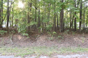 Lot 2 Lower Bottom Rd, Alexander City, AL 35010