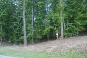 Lot 6 Creek Landing Lane, Alexander City, AL 35010