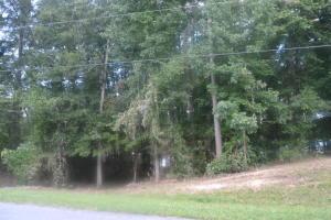 Lot 8 Creek Landing Lane, Alexander City, AL 35010
