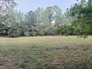 Lot 5 Pinehurst St, Tallassee, AL 36078