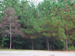 Lot 7 Pinehurst St, Tallassee, AL 36078