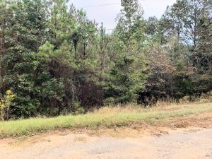 Lot 9 Pinehurst St, Tallassee, AL 36078