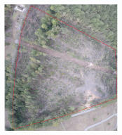 Full Map of lot and clearing