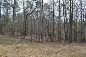 Lot 40 Fern Ridge Crt, Dadeville, AL 36853