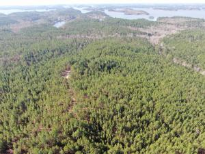 +/- 40 Acres On Wildwood Rd, Dadeville, AL 36853