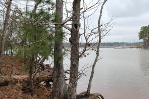 LOT 53 Eastwood Ln, Dadeville, AL 36853
