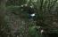 Old Susannah Rd, Dadeville, AL 36853