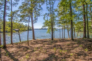 Lot 16 Kennebec on Lake Martin