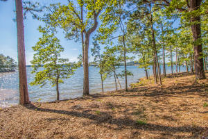 Lot 20 Kennebec, Dadeville, AL 36853