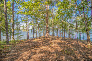 Lot 22 Kennebec