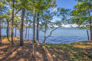 Lot 23 Kennebec on Lake Martin