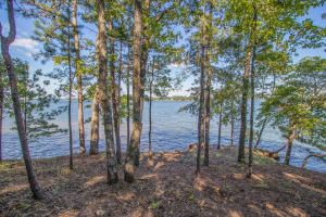Lot 24 Kennebec on Lake Martin