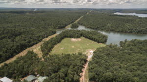 50 +/- acres on Lakewood Dr, Dadeville, AL 36853