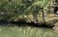 37 Cleat Curve (Lot21 White Oak), Jacksons Gap, AL 36861