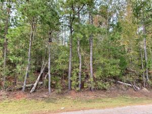 3+/- Acres Old Millers Ferry Road, Dadeville, AL 36853