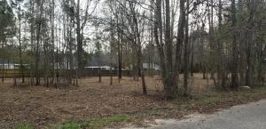 Lot #5 Glendale Acres, Eclectic, AL 36024