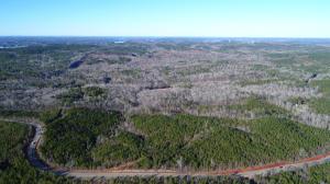 48 Acres on Hwy. 50, Dadeville, AL 36853