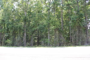13 +/- Acres on Hwy. 49 S., Dadeville, AL 36853