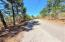 Lot 4 Whiskey Ridge, Dadeville, AL 36853