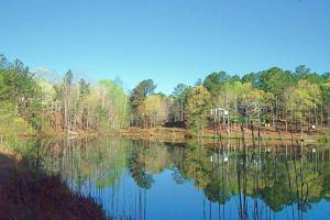 347 Murphy Dam Rd, Dadeville, AL 36853