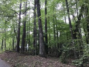 Lot 107 Hickory Way, Dadeville, AL 36853