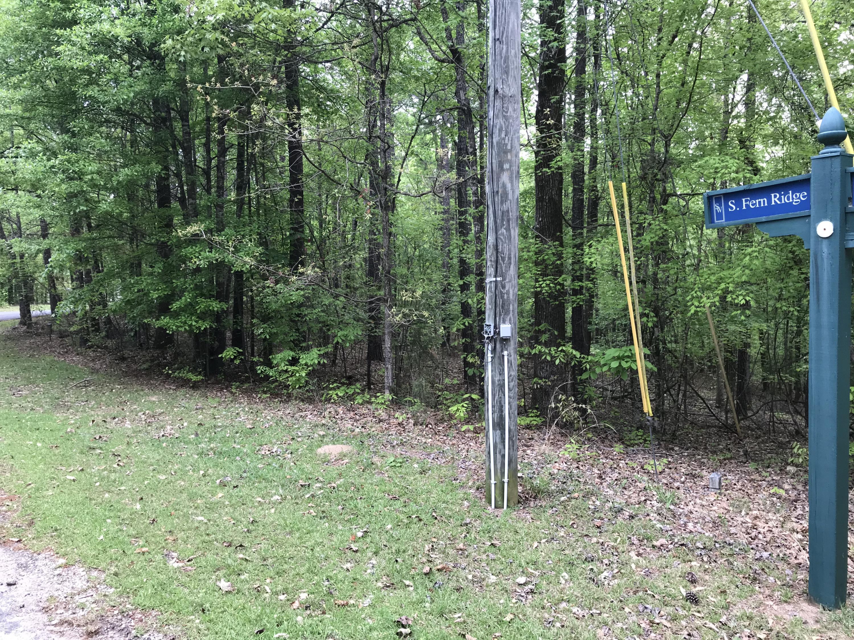 Lot 10 Fern Ridge Crt S, Dadeville, AL 36853